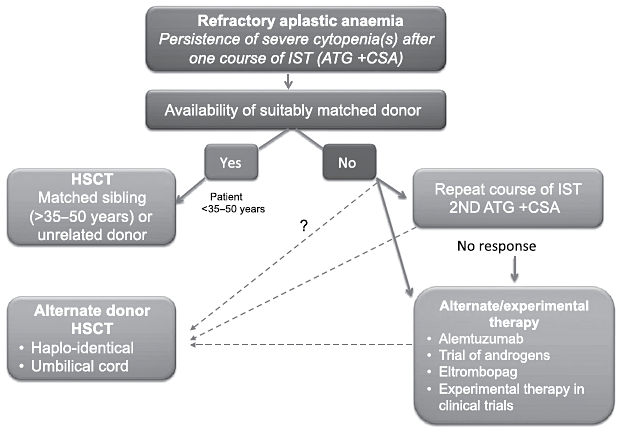 Adult refractory severe aplastic anaemia flowchart